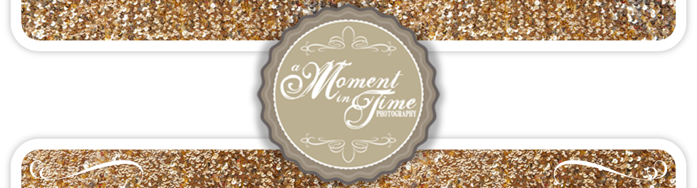 A Moment in Time Photography logo